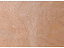 Surface of rustic wood background texture