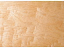 Close up burl wood grain background texture