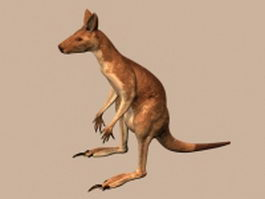 Red kangaroo 3d model preview