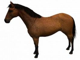 Domestic horse 3d model preview