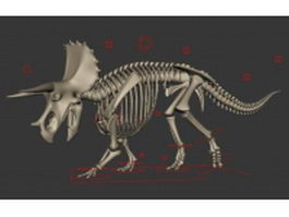 Triceratops Dinosaur Skeleton 3d preview