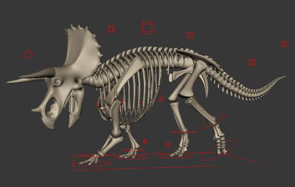Triceratops Dinosaur Skeleton 3d rendering