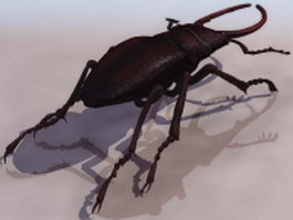 Stag beetle 3d model preview