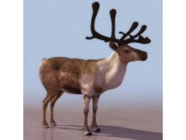 Low poly forest reindeer 3d model preview