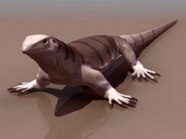 Central bearded dragon 3d model preview