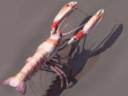 Spiny lobster 3d preview