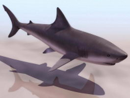 Whale shark 3d preview