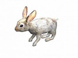 European rabbit 3d model preview