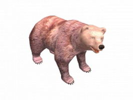 Syrian brown bear 3d model preview