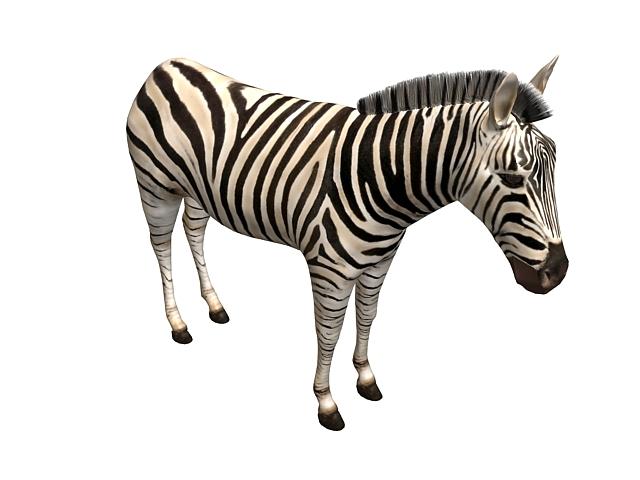 Imperial zebra 3d rendering