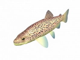 Brown trout 3d model preview