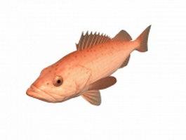 Bocaccio rockfish 3d model preview