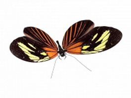 Adult butterfly 3d model preview