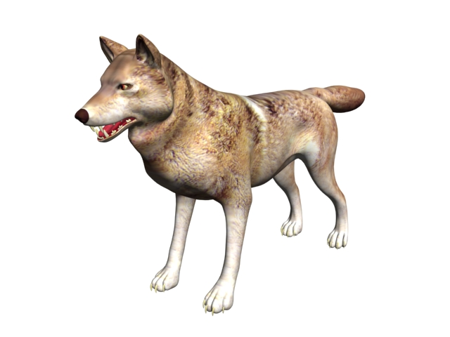 Timber wolf 3d rendering