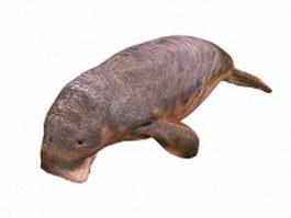 Dugong dugon 3d model preview