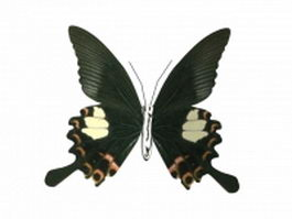 Black butterfly 3d model preview