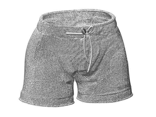 Men's board shorts 3d rendering