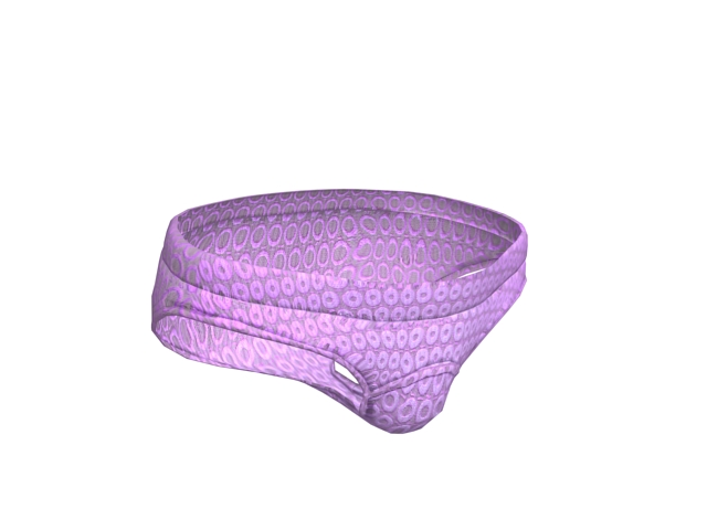 Women underwear printed panties 3d rendering