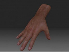 Realistic male hand 3d preview