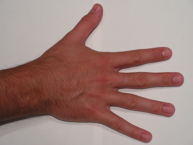 Realistic male hand 3d rendering