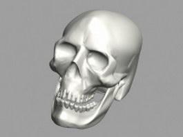 Human skull 3d model preview