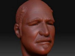 Bald head 3d preview