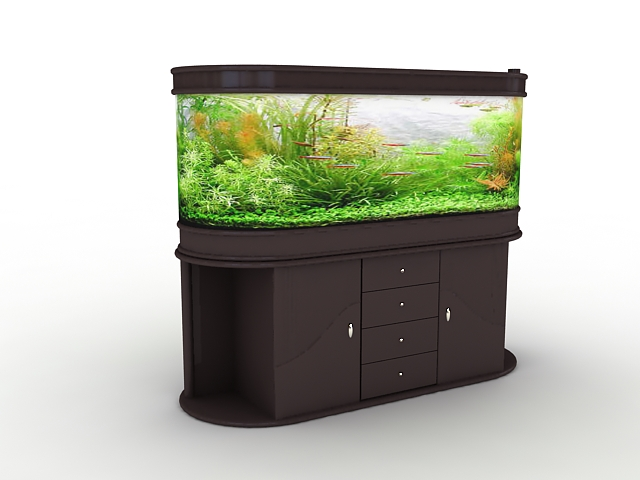 Aquarium with plants and fish 3d rendering