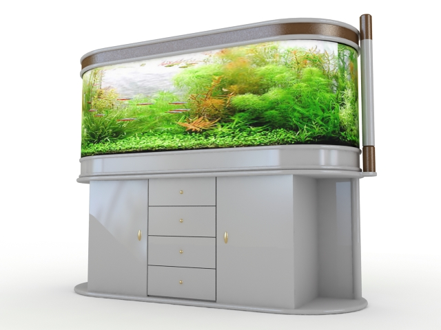 Elegant aquarium decoration 3d rendering