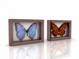 Butterfly specimens framed 3d preview