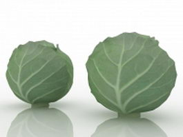 Green cabbage 3d preview