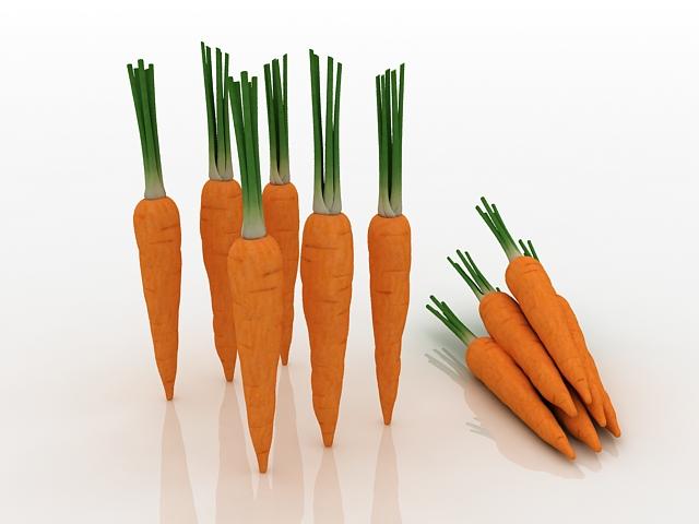 Domestic carrots 3d rendering