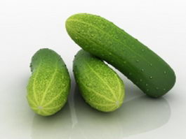 Cucumber vegetable 3d preview
