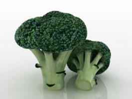 Broccoli flower heads 3d model preview