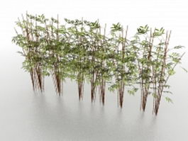 Bamboo plants 3d model preview