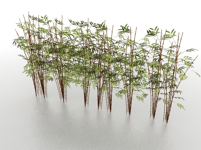 Bamboo plants 3d model 3ds max files free download ...