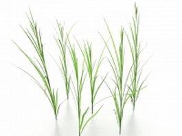 Grass 3d preview