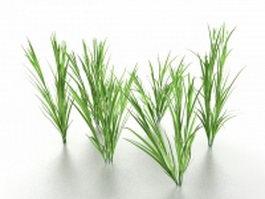 Growing grass 3d preview