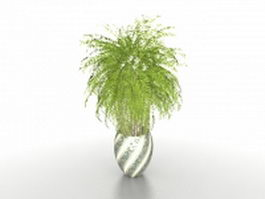 Potted palm trees 3d model preview