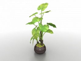 Large potted plants 3d model preview