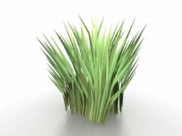 Tussock grass 3d preview