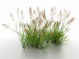 Wetland reeds 3d preview