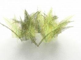 Fern plants 3d model preview
