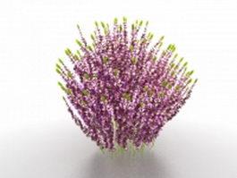 Purple shrubs for landscaping 3d model preview