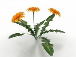 Sunflower plant 3d model preview
