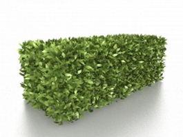 Box hedge shrubs 3d model preview