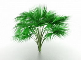 Cat palm tree 3d model preview