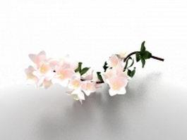 Pear blossom flower 3d model preview