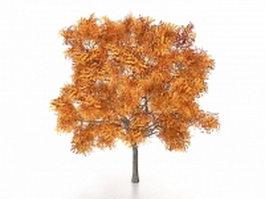 Golden ash tree 3d model preview