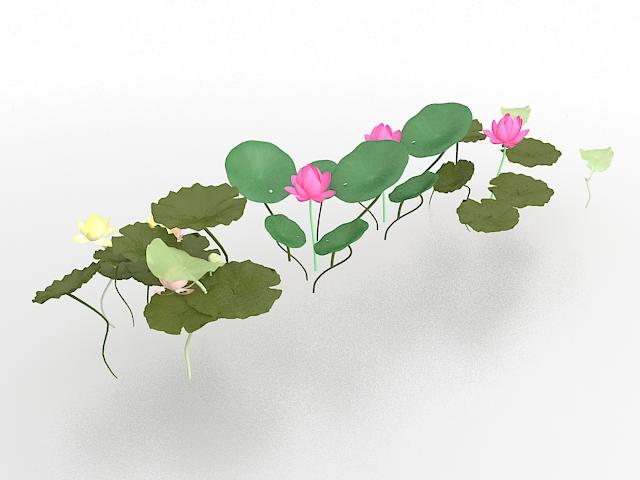 Lotus flower and leaves 3d rendering