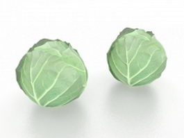 Cabbage vegetable 3d model preview